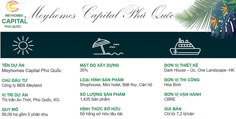 thông tin tổng quan Meyhomes Capital